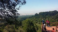 Horto Florestal, Núcleo Pedra Grande - SP