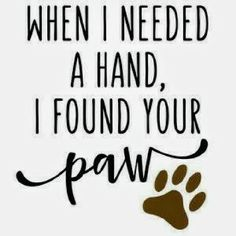cat quotes I think Im in love with this design from the Silhouette Design Store! - Tap the pin for the most adorable pawtastic fur baby apparel! Youll love the dog clothes and cat clothes! Cat Quotes, Animal Quotes, Lost Dog Quotes, Pet Quotes Dog, Dog Qoutes, Crazy Cat Lady, Crazy Cats, Silhouette Design, Hand Silhouette