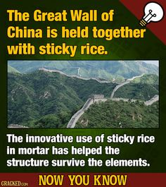 FOOD TRUTH: an integral part of The Great Wall of China won't show up in your amateur photography: rice. #rice #food #greatwallofchina #foodfacts #foodtruth #interesting