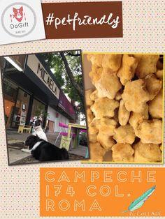 Te recordamos que en Micaela puedes ir a comer con tu perruno y encontrar @dogiftmx Campeche 174 Roma Sur #petfriendly