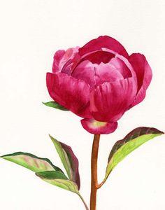 Sharon Freeman's Pacific Northwest Watercolors