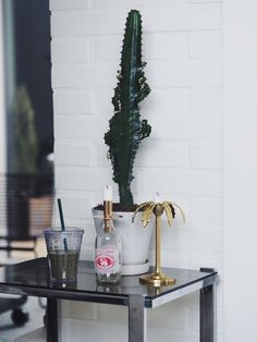 Cactus and candelholder / Coco Sweet Dreams | Lily.fi