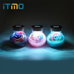 iTimo LED RGB Dimmer Lamp Night Light Flower Bottle Creative Romantic Rose Bulb Great Holiday Gift For Girl 16 Colors Remote