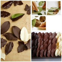 Decorar tortas con hojas de chocolate. Decorating desserts with chocolate leaves.