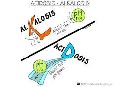 Nursing Education Consultants Memory Notebook | Acidosis - Alkalosis