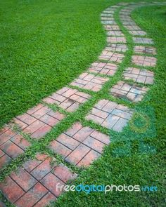 """Curved Path On A Lawn Area"" by nuttakit. Available to download free or purchase in high resolution at www.freedigitalphotos.net"