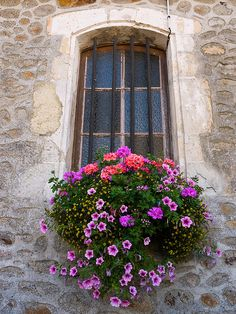 Big flower window. I want my window boxes to look like this this spring :)