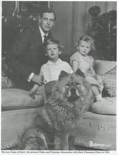 ARTICLE- The Chow Chow Club (England) Founded 1895....