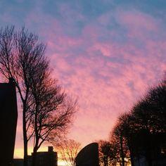 Pink heart-shaped sky