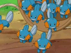 me and the other 403 mudkip fans invading Galar Pokemon Gif, Pokemon Memes, Pokemon Funny, Pokemon Fan Art, Cool Pokemon, Pokemon Stuff, Pokemon Starters, Cute Pokemon Pictures, Mudkip
