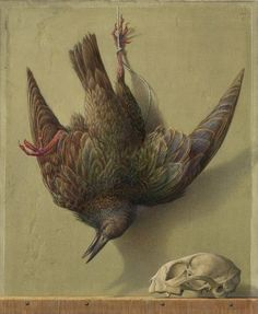 Tempera, Painting, Graphic Art Prints, Birds, Watercolour, Drawing S, Painting Art, Paintings, Painted Canvas