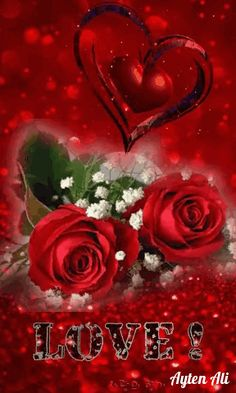 Beautiful Love Images, Love Heart Images, Love Heart Gif, Love You Gif, Love You Images, Beautiful Roses, Love Wallpaper Download, Love Wallpaper Backgrounds, Cute Love Wallpapers