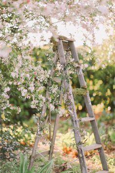 Shabby chic ladder for a wedding | Jenny Sun Photography | http://burnettsboards.com/2014/01/enchanted-garden-editorial/