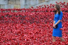 Tower of London ceramic poppies | Red ceramic poppies spill from Tower of London on 100th anniversary of ...
