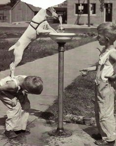 15 Funny Old Pictures of Cute Kids With Their Lovely Pets ~ vintage everyday Old Pictures, Old Photos, Antique Photos, Vintage Pictures, I Love Dogs, Puppy Love, Mans Best Friend, Best Friends, True Friends