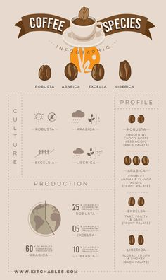 Infographic: Types of Coffee Species - The Gourmet Coffee Cup - Coffee Coffee Icon, Coffee Type, Coffee Pods, Best Coffee, Coffee Maker, Coffee Geek, Coffee Lovers, Coffee Machine, Espresso Drinks