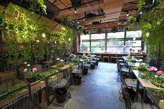 garden cafè - Cerca con Google