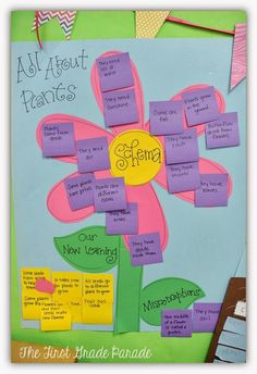 Plants - schema and new learning anchor chart for plant study in kindergarten and first grade