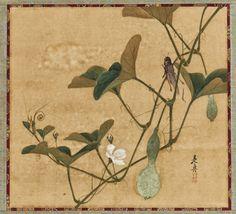 Shibata Zeshin   Grasshopper on Gourd Vine   Japan   Meiji period (1868–1912)   Asian Art Museum.