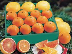Freshly Picked Oranges from Hale Groves now at 10% Off! Click here to save: http://www.cdcoupons.com/gifts-jewelry/hale-groves-promotion-code