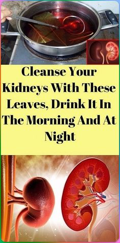 DETOX YOUR KIDNEYS AND IMPROVES FUNCTIONALITY There are many factors that can contribute to kidney toxicity and improper kidney function.There are many factors that can contribute to kidney toxicity and improper kidney function. Smoothie Detox, Healthy Smoothies, Healthy Drinks, Fun Drinks, Yummy Drinks, Smoothie Recipes, Healthy Snacks, Yummy Food, Detox Soup