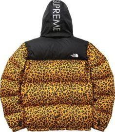 Supreme North Face Leo