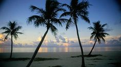 Key West. A wonderful place to visit the history and to relax.