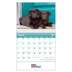 """Customized Puppies and Kittens Stapled Wall Calendars: Product Size: Open: 10 ½"""" W x 18 ¼"""" H • Closed: 10 ½"""" W x 10"""" H Imprint Area: Standard: 9"""" W x 1 ½"""" H Tab under calendar Carton Weight: 39 lbs Packaging: 200 Material: 60 lb paper stock with gloss text and UV coated cover Made In: USA. #customcalendars #promotionalproduct #wallcalendars"""
