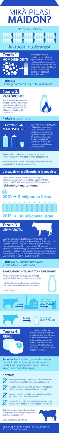 Infografiikka maitoon liittyvistä terveysvaivoista ja niiden mahdollisista syntyperistä.