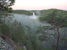 Repovesi National Park. Photo: Lassi Kujala