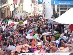 02 Parlaments - Trobades d'Escoles en Valencià 2013 a Pedreguer (23) Foto: laveupv.com