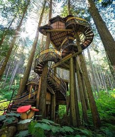 DIY Tree House Ideas & How To Build A Treehouse (For Your ... Lakes Dollhouse Tree House Designer Html on