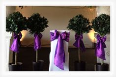 Beautiful purple taffeta sashes which compliment the elegance of the room so well and make the bay trees look wonderful :D
