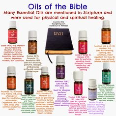 """What are essential oils? They are the  """"Life-Blood"""" of plants - the """"essence"""" that contains the plant's  life-force. They are composed of t..."""