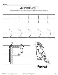 *FREE* Uppercase Letter P Pre-Writing Practice Worksheet Worksheet.Practice handwriting skills while learning the shape of the letter -P- with this alphabet pre-writing worksheet.
