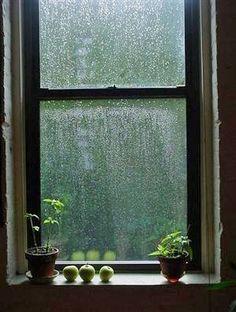 Through the window ~