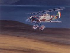 MERIDIONAL IMAM Ro37 Reconnaissance Plane