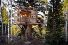 Tree House For the Grown-ups in Colorado