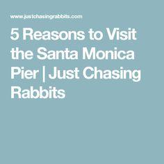 5 Reasons to Visit the Santa Monica Pier | Just Chasing Rabbits