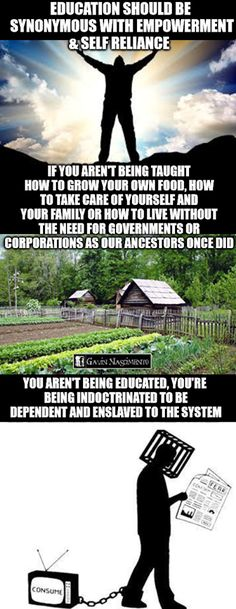 Sad but true Anarchism, Conspiracy Theories, Common Sense, Consciousness, Illuminati People, Things To Think About, Self Reliance Quotes, Deep Thoughts, Knowledge Is Power