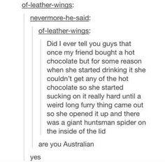 Are you from Australia lol Best Of Tumblr, My Tumblr, Tumblr Stuff, Funny Tumblr Posts, Aussie Memes, Australian Memes, Australia Funny, Australia Tumblr, Hetalia Australia