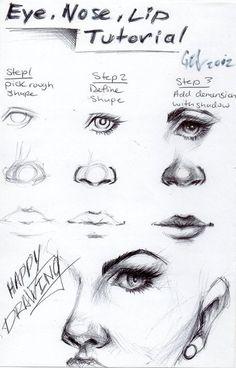 Anatomie visage oeil nez lèvres