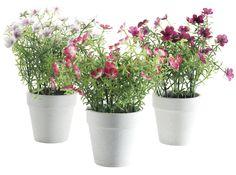 bloemen in pot Pronto Wonen