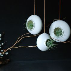 Set of three Round Hanging Air Planters by InglesidePottery, $105.00