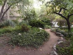 The Upper West Side of NYC has a number of community gardens which are the perfect outdoor hiding places. Nyc Bucket List, Riverside Park, Upper West Side, Hiding Places, Central Park, Country Roads, Street, Garden, Plants