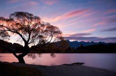 Lake Wakatipu, New Zealand.  www.MikeHollman.com Lake Wakatipu, Long White Cloud, Middle Earth, Tree Of Life, New Zealand, Nature Photography, Pure Products, Spaces, Sunset