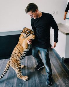 Martin Garrix and a tiger Home Music, Dj Music, Music Is Life, Martin Garrix Instagram, Edm, Electro Music, Alesso, Best Dj, Chainsmokers
