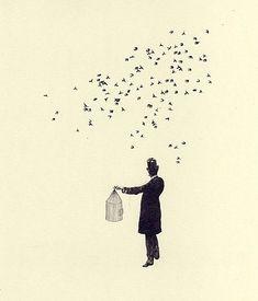 art, bird, birds flying, cage, flock, freedom