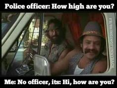 15 Best Quotes, Man images   Cheech, chong, Up in smoke ...