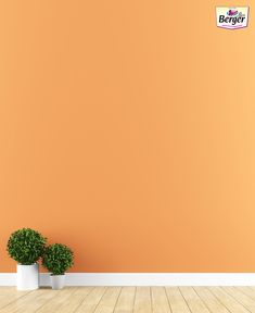 Enhance your interior wall paint colour   by adding a set of plants in the corner.  #FloorDecor